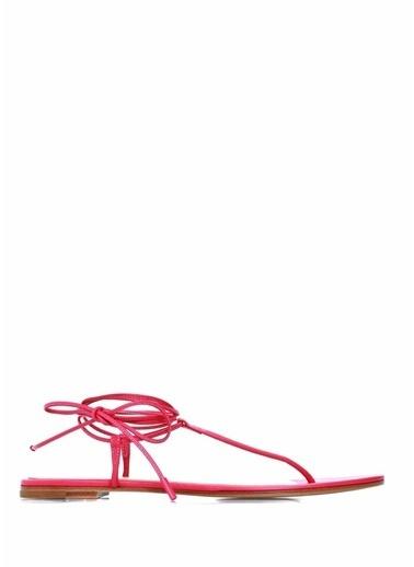Gianvito Rossi Sandalet Fuşya